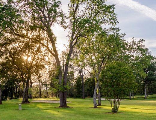 Shasta Golf 11