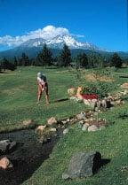 Shasta Golf 3