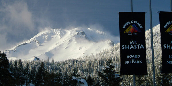 Shasta Winter