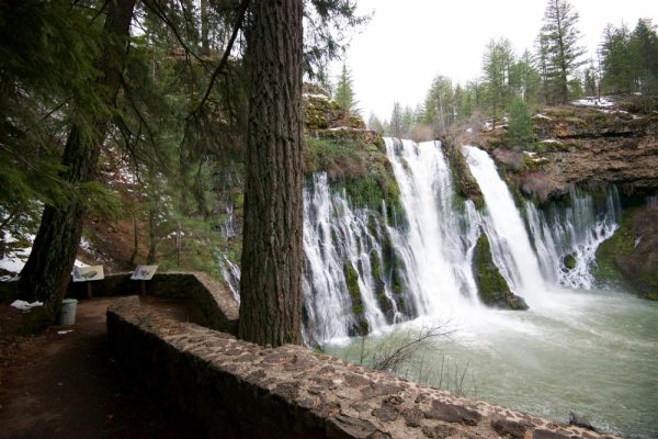 Shasta Waterfalls